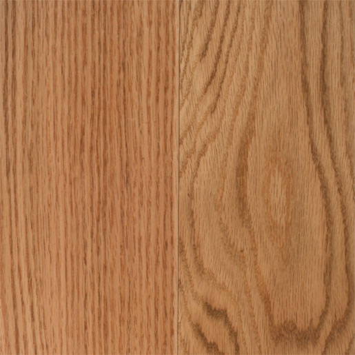 Photo of Red Oak