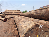 apitong trailer decking log-yard-indonesia-keruing.JPG